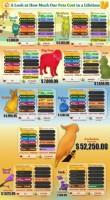 Quel est le budget moyen pour son animal ?