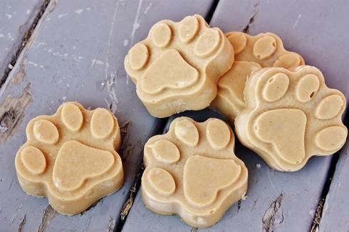 Atelier DIY : 4 recettes de glaces maison pour chien et chat