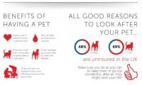 Quels sont les bénéfices d'avoir un animal ?