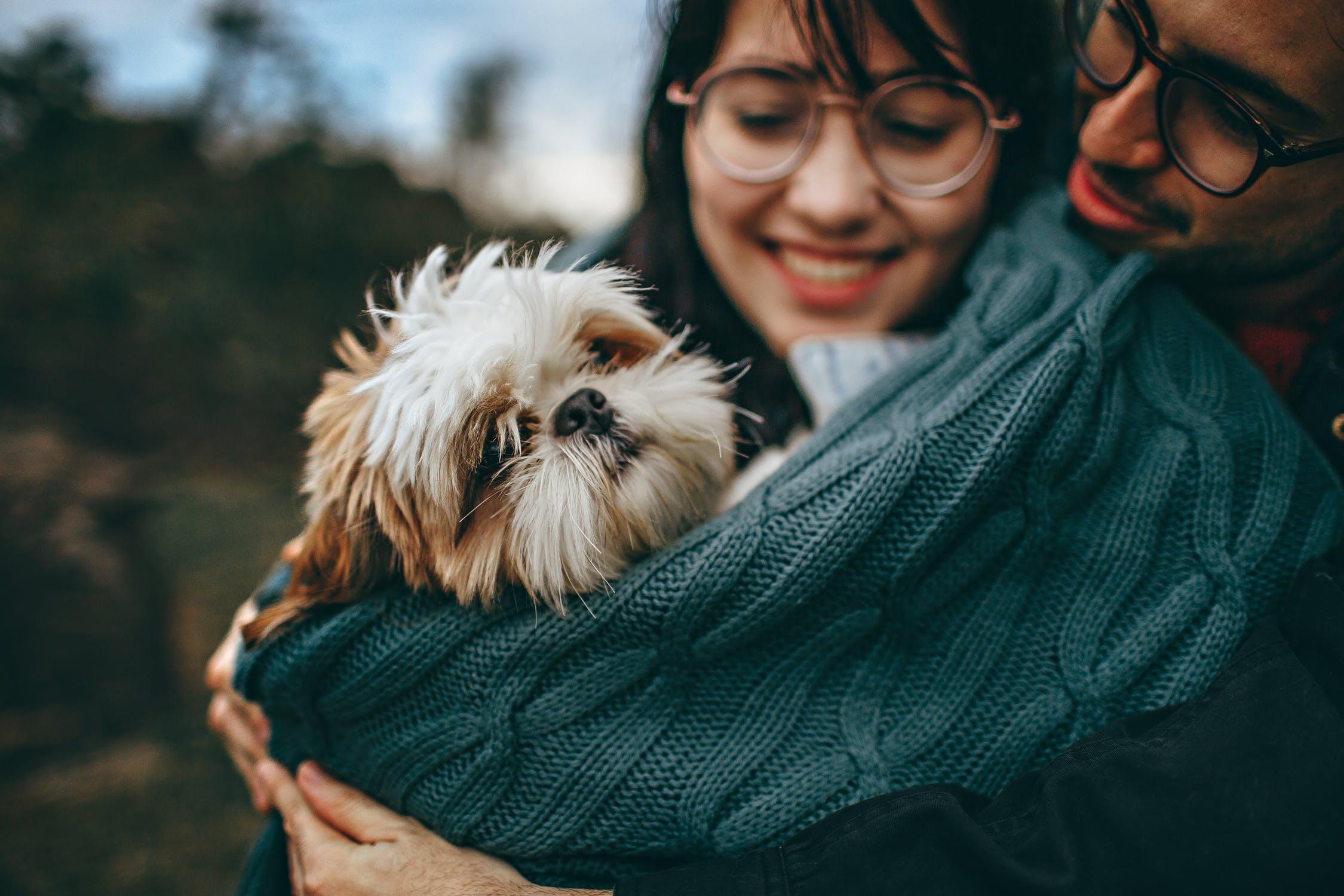 couple-chien-esperance-vie
