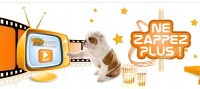 Votre animalerie en ligne et ses conseils en vidéo