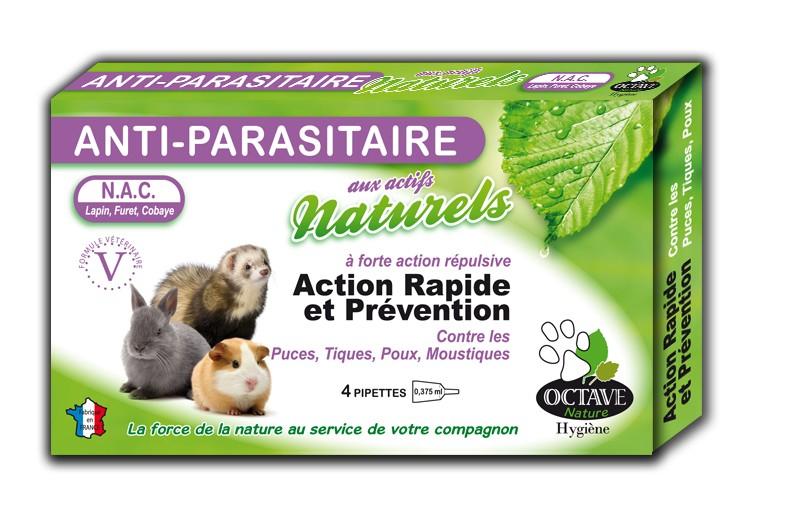 Les parasites pour les escargots daquarium