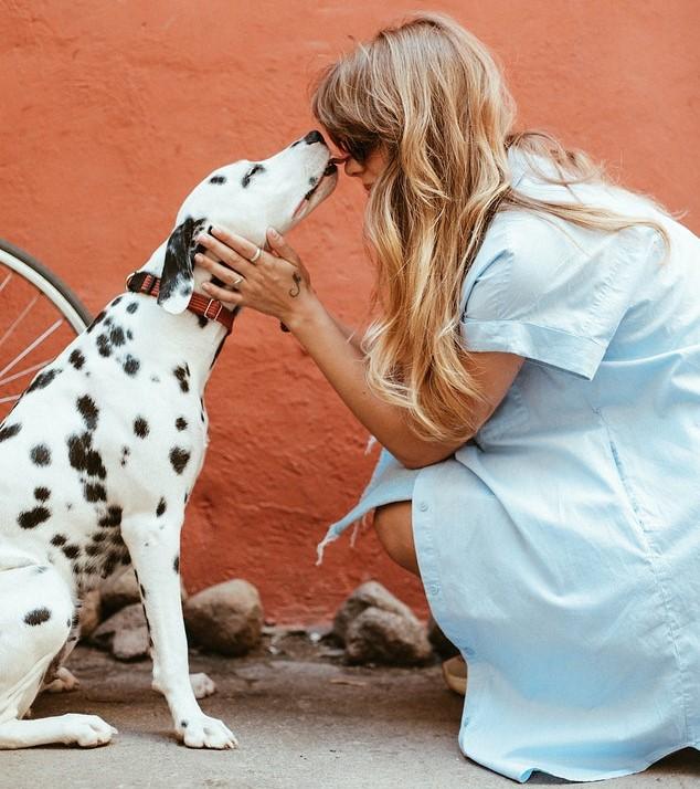 Comment gérer le déconfinement avec son animal de compagnie ?