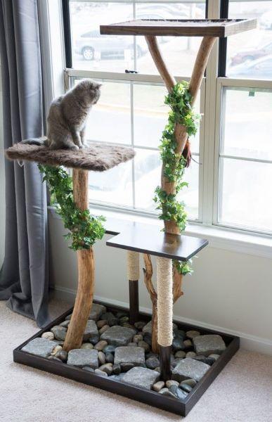L'arbre à chat avec branche