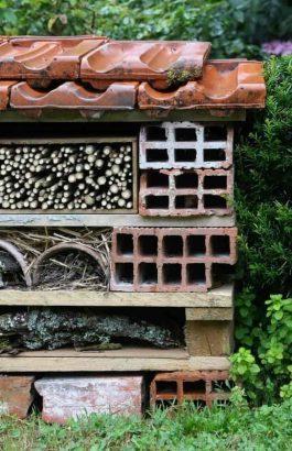 Hôtel à insectes - Briques ou parpaings