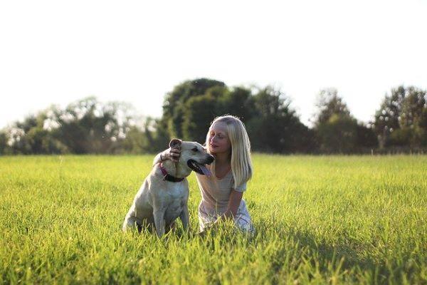 Médecines naturelles pour animaux