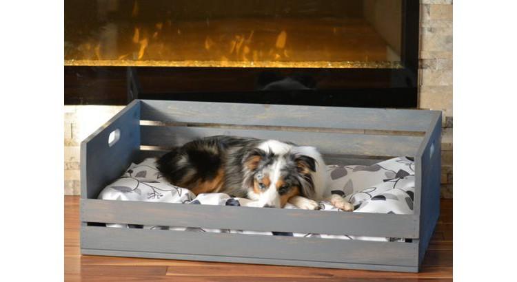 Canapé palette pour chien