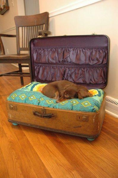Valise vintage lit pour chien