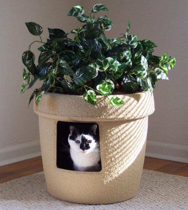 Pot de fleurs cachette pour animal