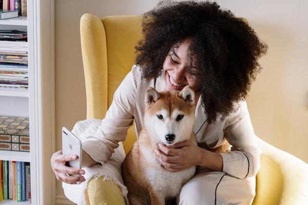 Gamelle : l'application qui scanne l'alimentation de votre animal