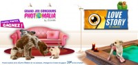 Concours Love Story des animaux