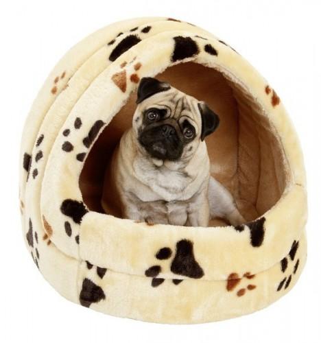 Choisir un panier pour un petit chien Carlin