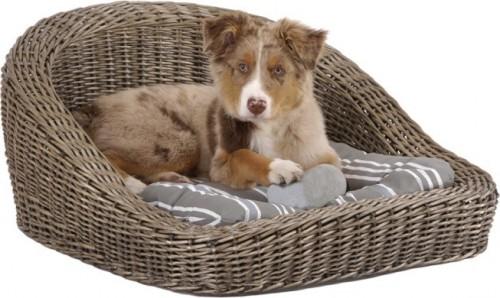 Quel panier ou corbeille choisir pour mon chien ? - Blog