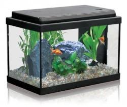 installer premier aquarium