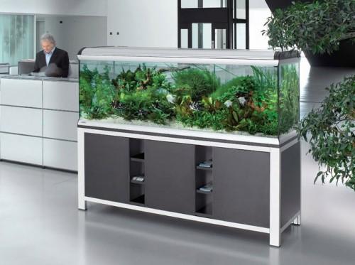 L 39 aquarium d 39 eau de mer blog for Aquarium pas cher 50l
