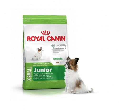 quel royal canin pour chien blog. Black Bedroom Furniture Sets. Home Design Ideas