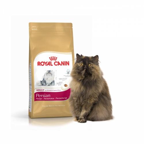 Quel Royal canin pour chat persan ?
