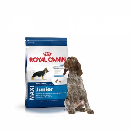 Royal Canin junior quantité de croquettes