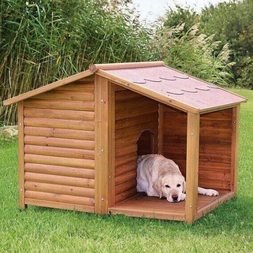 Quelle taille de niche pour mon chien   - Blog 5fce984bb124