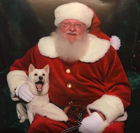 Fan du père Noël... Kya le rencontre enfin !