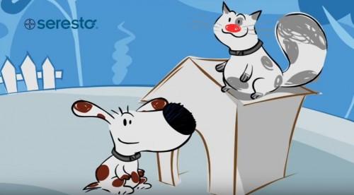 Antiparasitaire chien et chat : le collier Seresto