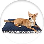 Matelas pour chien de la marque Zolia