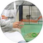 Cage zoomalia