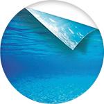Poster pour décoration d'aquarium
