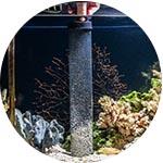 Nettoyage de l'aquarium