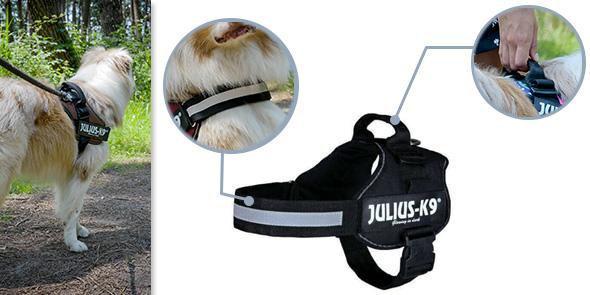 Parmi les accessoires pour harnais, vous pouvez vous procurer une  ganse-poignée qui sert à faciliter le dressage du chien, la marche au pied  et même pour ... a00717967316
