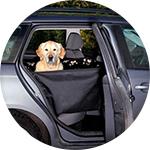 Modèle de transport voiture pour chien