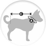 Taille de manteau pour chien