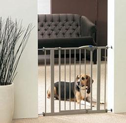 Barrière pour chien