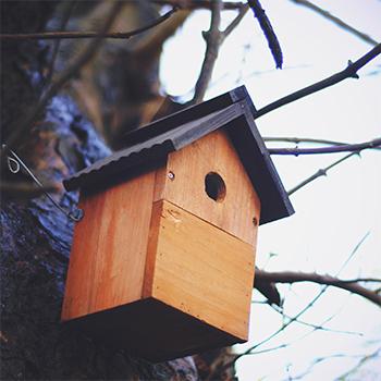 nichoir en bois pour oiseaux du jardin