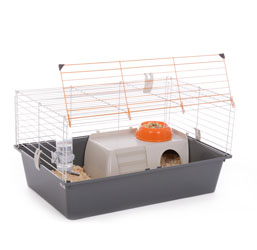 Accessoires cage lapin