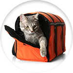 Sac de transport pour chat orange