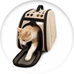 Sac de transport pour chat Zolia beige