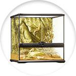 Terrarium avec environnement désertique