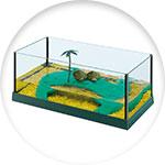 Aquaterrarium avec îlot central