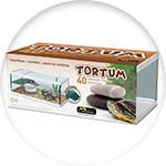 Aquaterrarium Tortum
