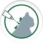 Fonctionnement pipette anti-parasitaire pour chat