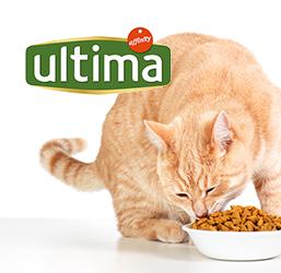Croquettes utlima pour chat