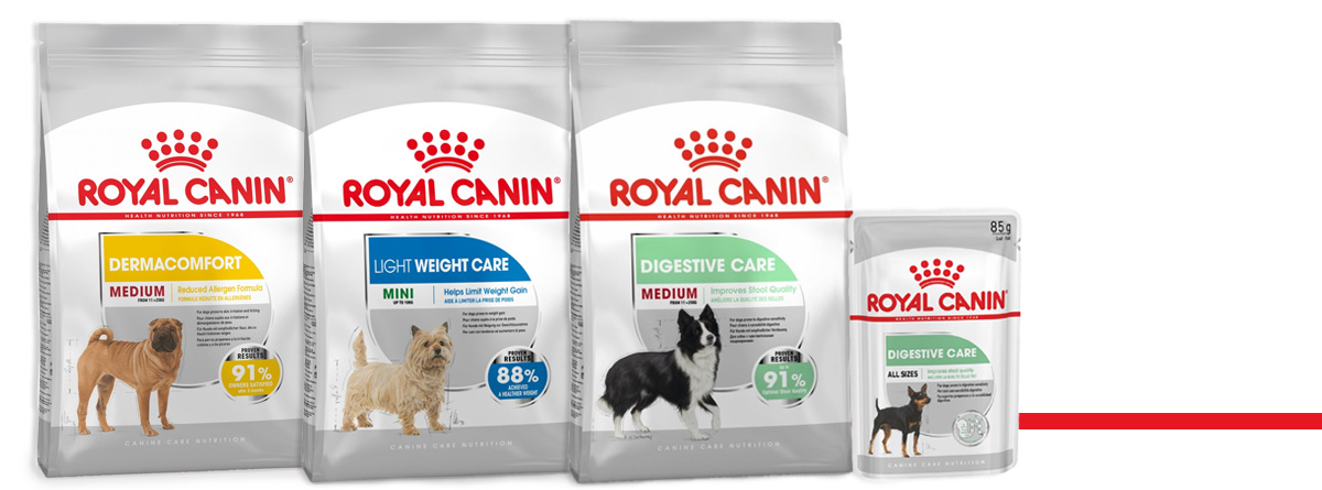gamme size royal canin
