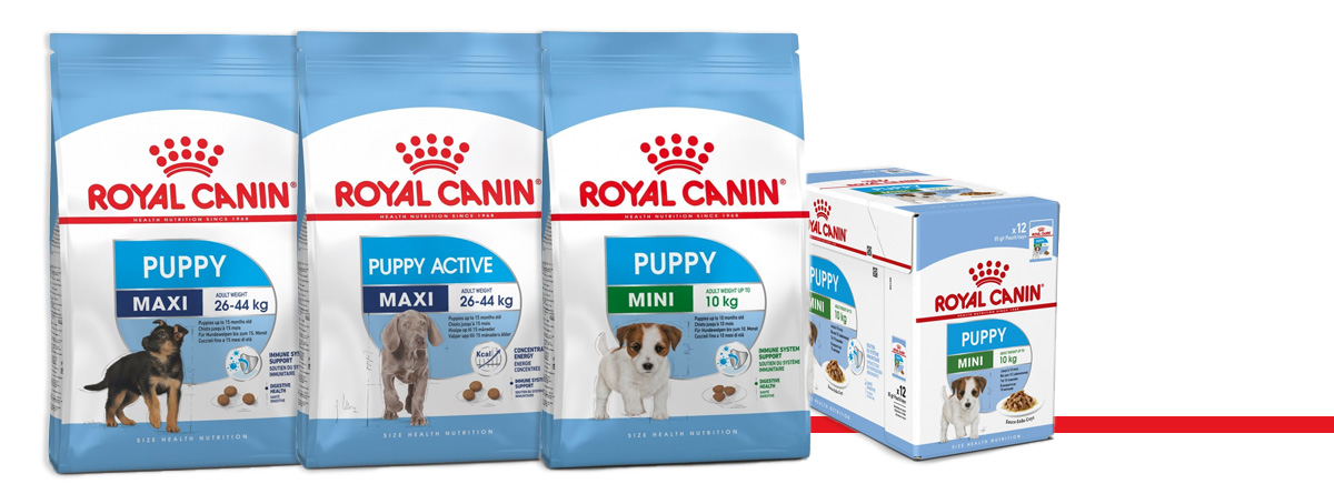 gamme puppy royal canin