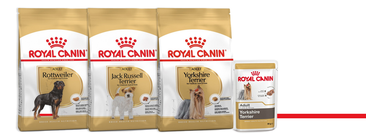 gamme chien de race royal canin