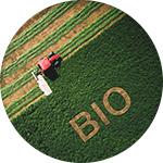 Hamiform agriculture bio