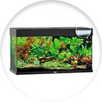 Modèle d'aquarium juwel
