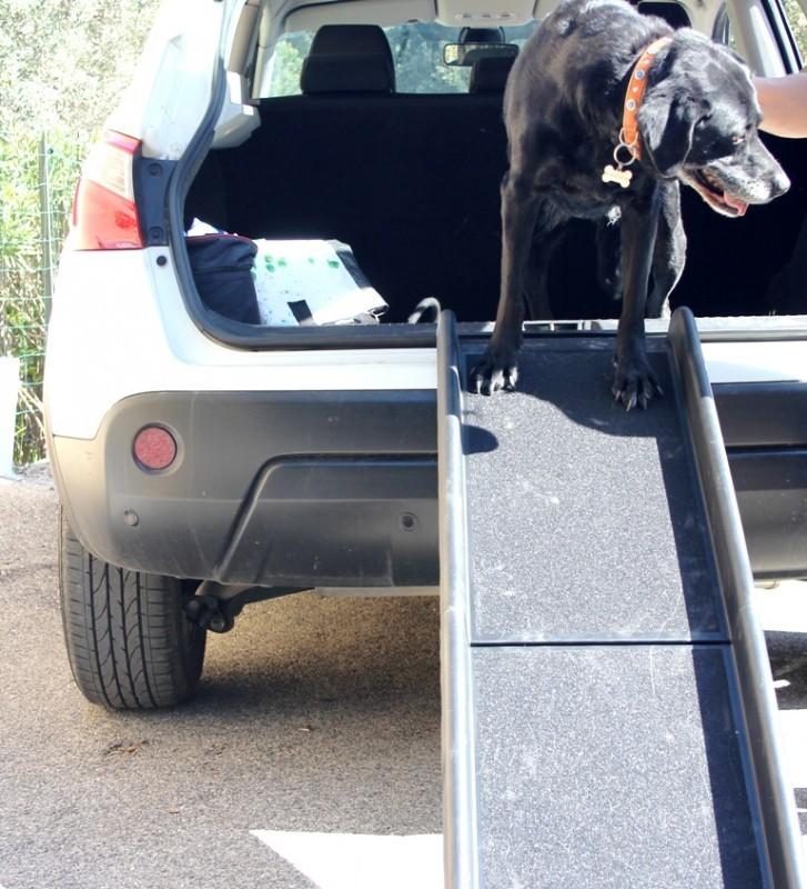 Rampe d 39 acc s pour chien accessoires voiture chien for Rampe dacces voiture