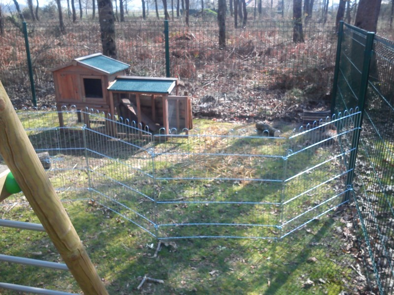 Enclos ext rieur avec filet de protection enclos lapin for Parc a lapin exterieur