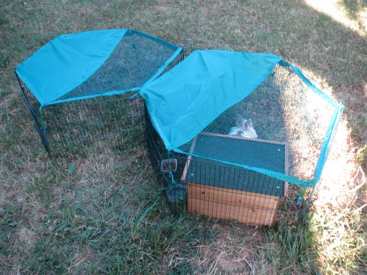 Enclos extérieur pour jeunes animaux - Enclos lapin